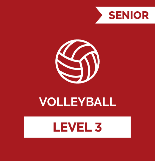 Volleyball SR - Level 3