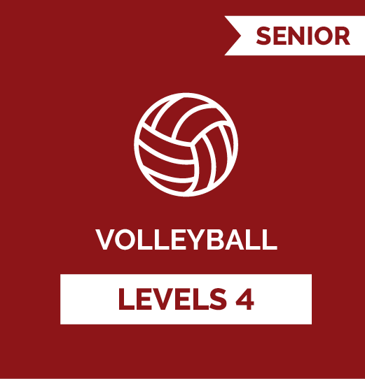 Volleyball SR - Level 4