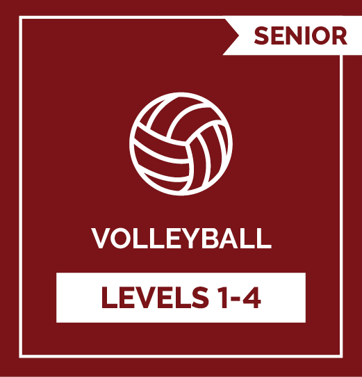 Volleyball SR Levels 1 - 4
